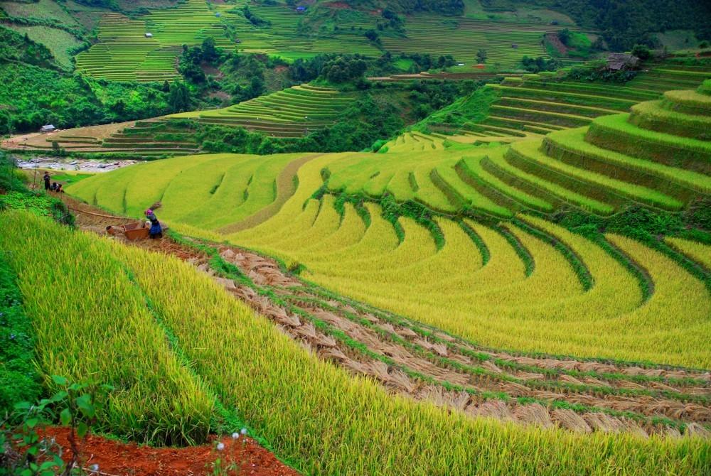 Rundrejse i Vietnam - den ultimative ferie i Vietnam