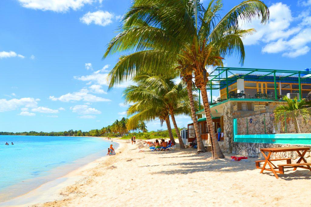 cuba-playa-larga-tropisk-strand-med-palmer1