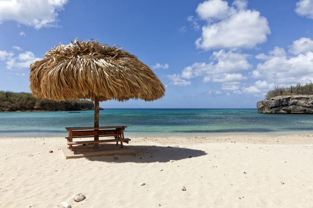 Curacao-palme-paa-strand-2-Colourbox