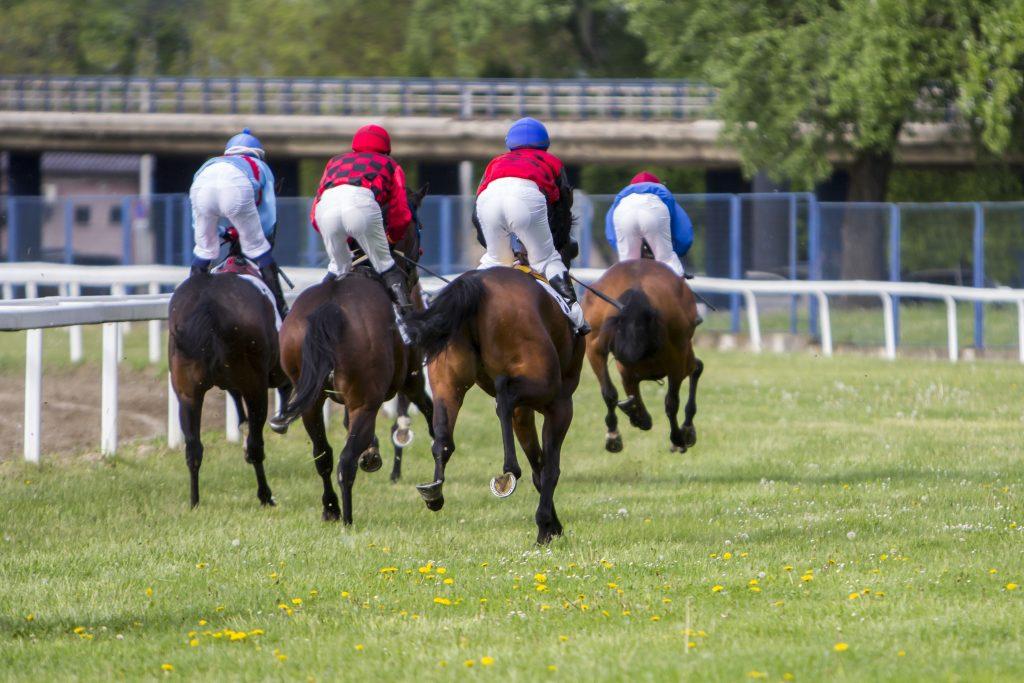 Hestevæddeløb er meget popoulært. Se det når du er på badeferie i Mauritius