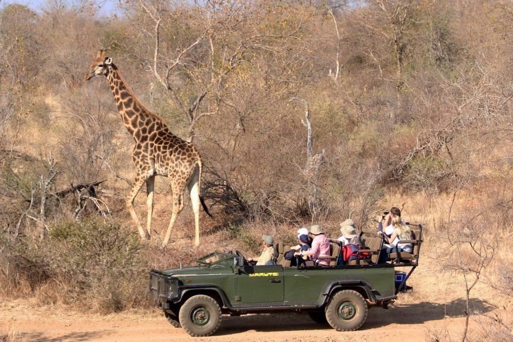 Makutsi_Safaris08