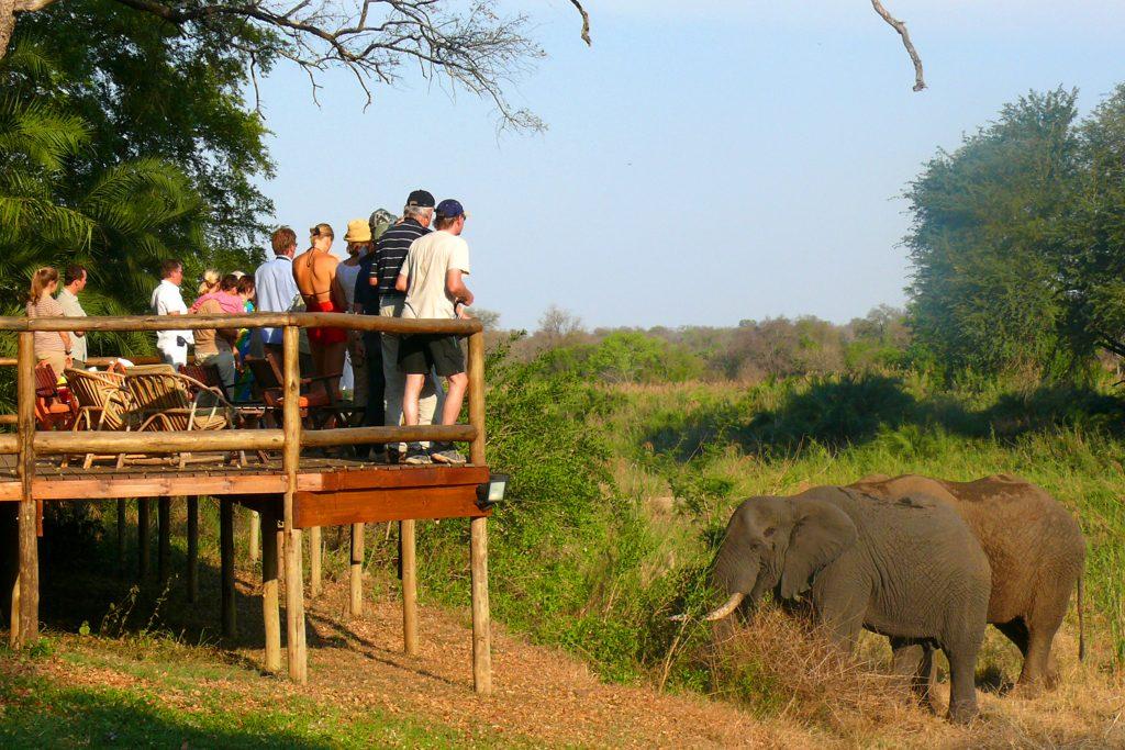På safari i Sydafrika bor du i vores lodge Makutsi