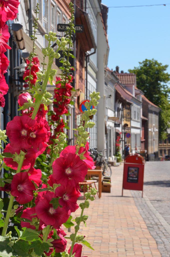 Ferie i Danmark er også en mulighed hos Svane Rejser