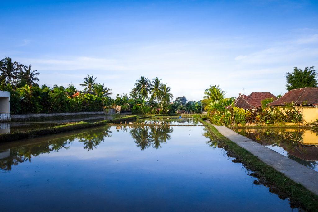 På en rejse til Bali oplever du masser af kultur og skønne strande