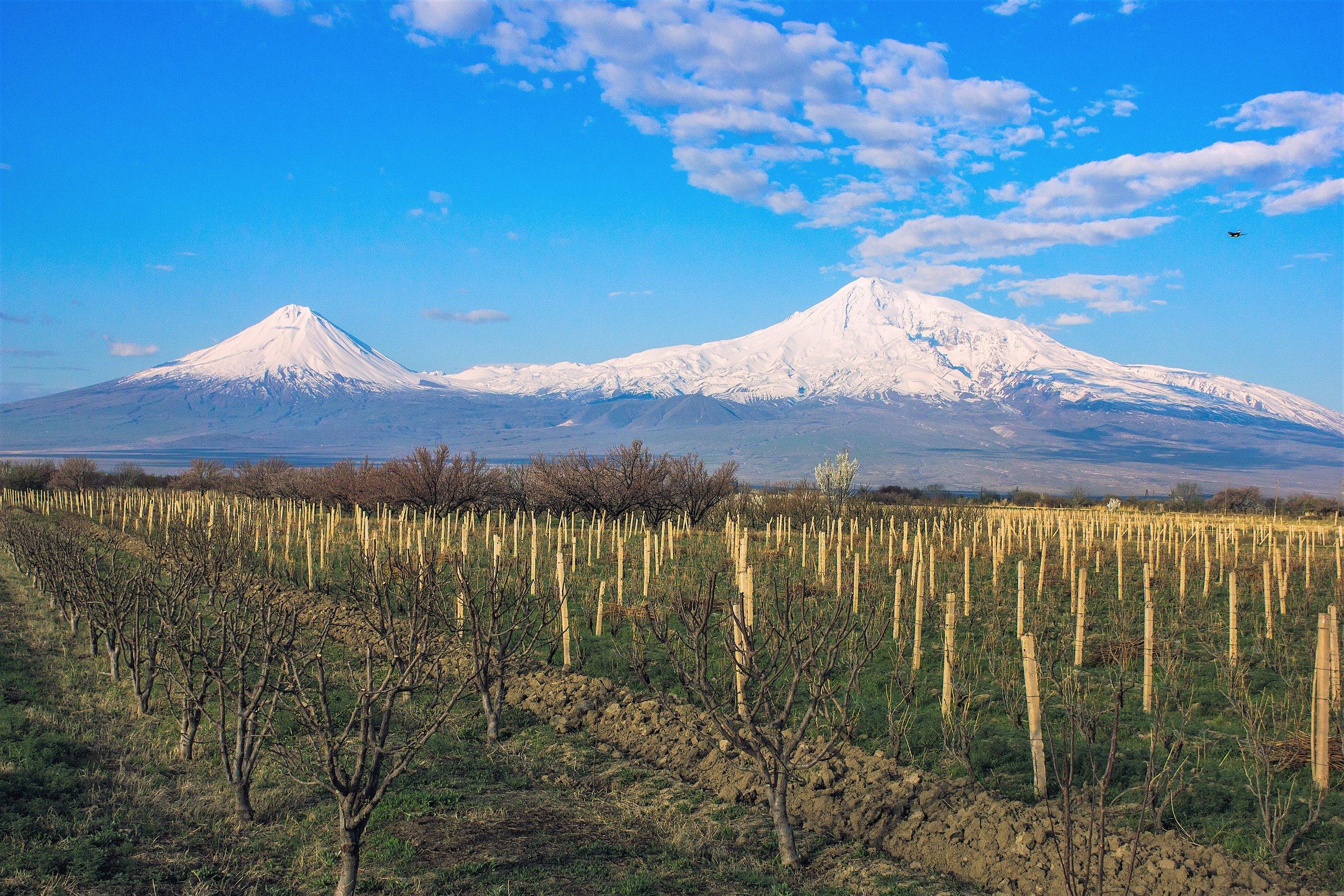 Armenien-Mount-Ararat-Redigeret