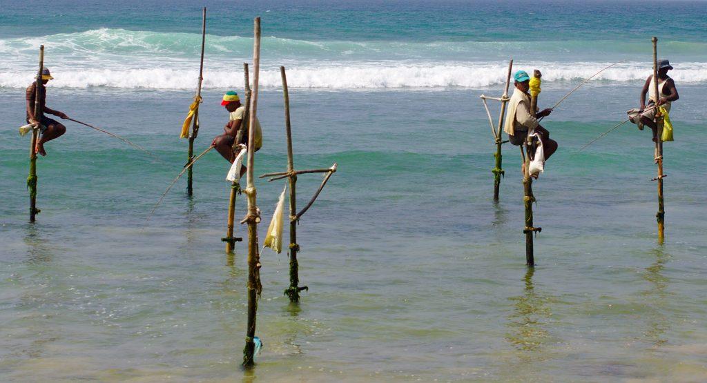 På en rejse til Sri Lanka ser du de berømte pælefiskere