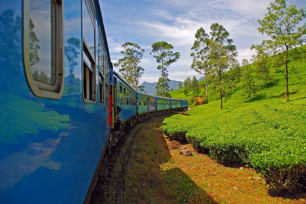 På en rejse til Sri Lanka kan du køre med tog igennem højlandets temarker