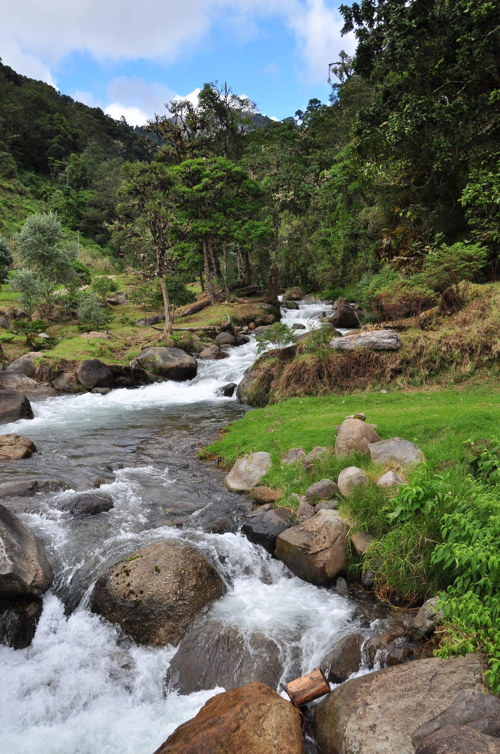 På en rejse til Costa Rica ser du San Gerardo Dota
