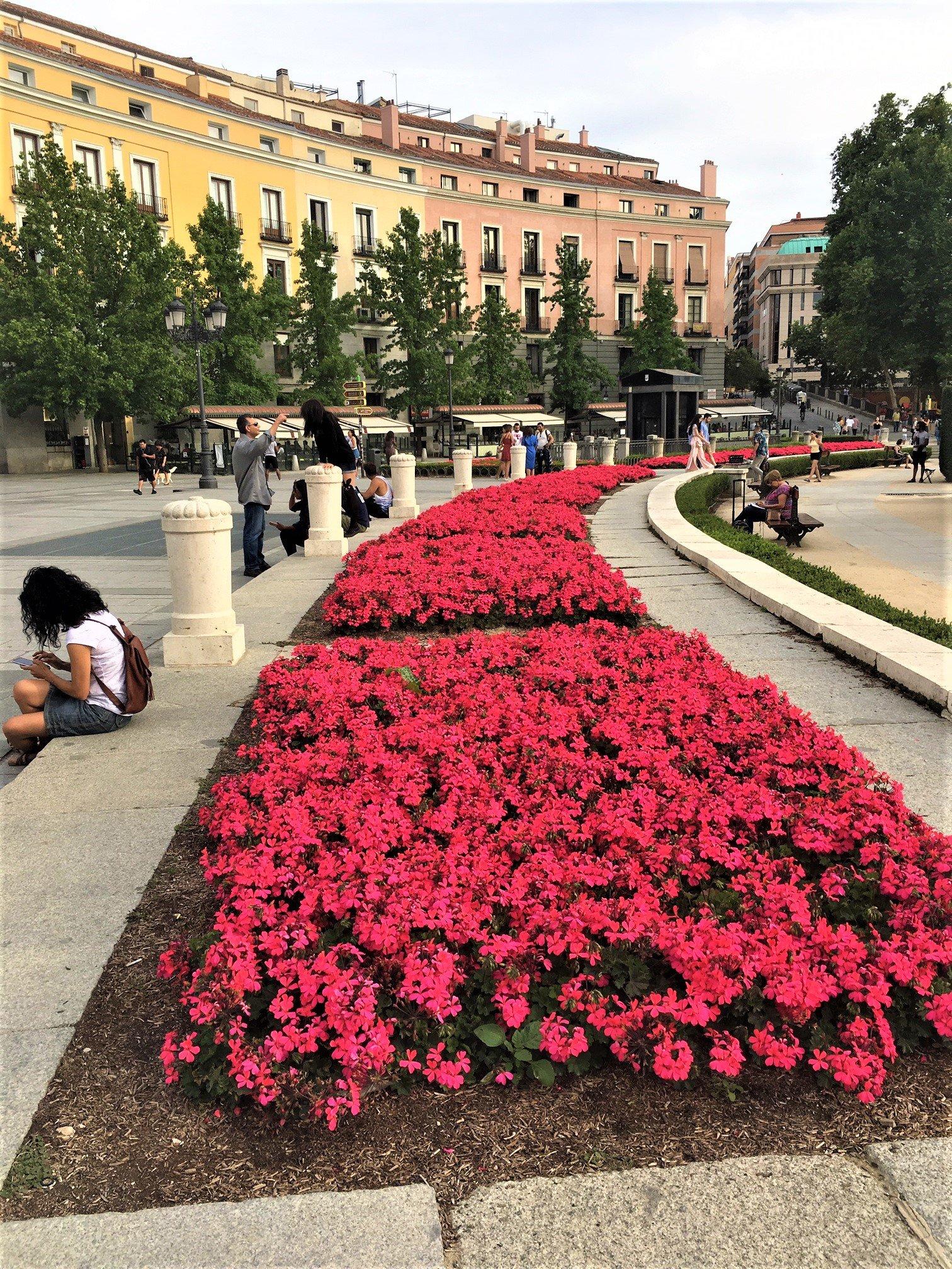 På en rejse til Madrid ser du masser af pladser