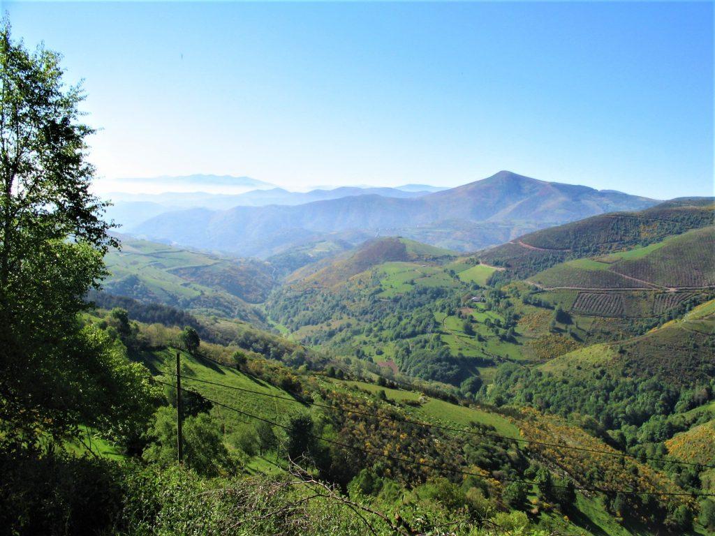 Vandreferie på Caminoen byder på flotte landskaber