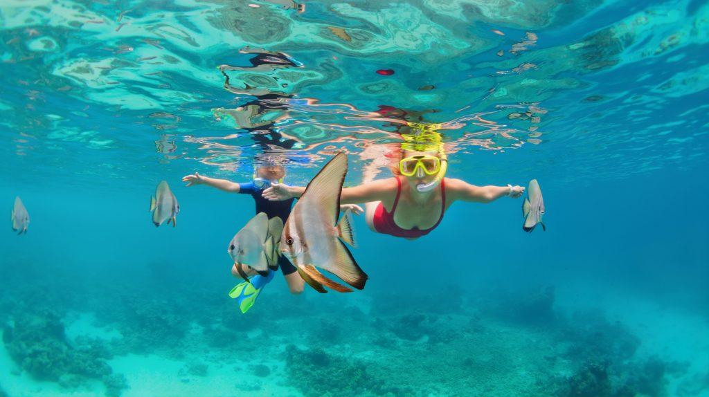 På en rejse til Bali kan du snorkle ved Menjangan