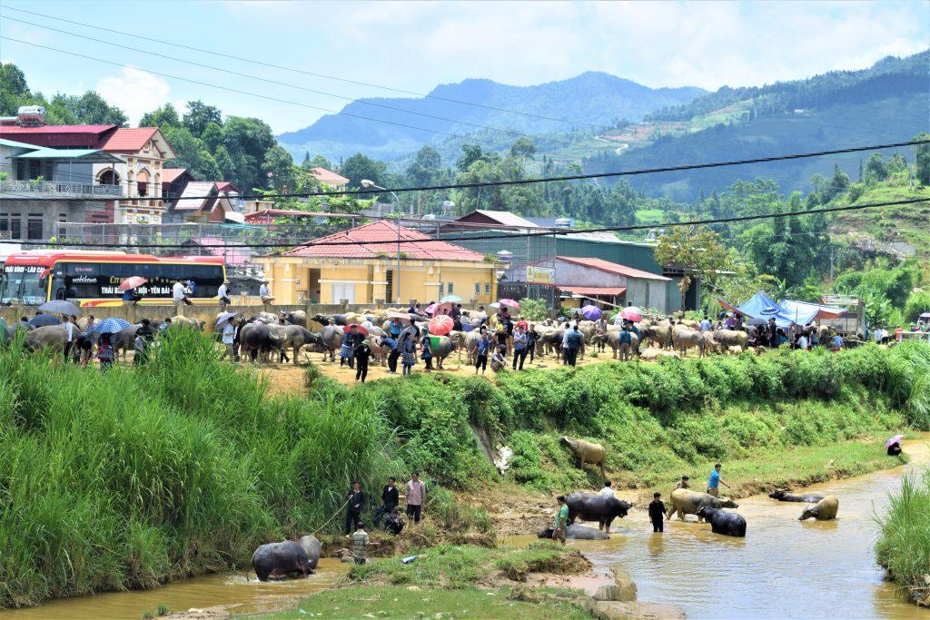 På en rejse til Vietnam kan du se et marked