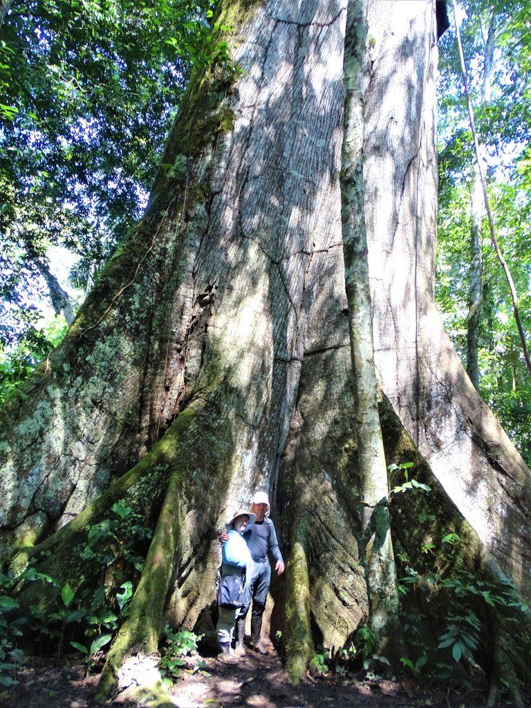 å rejser til Peru så Heidi og Lars smukke Posada Amazonica