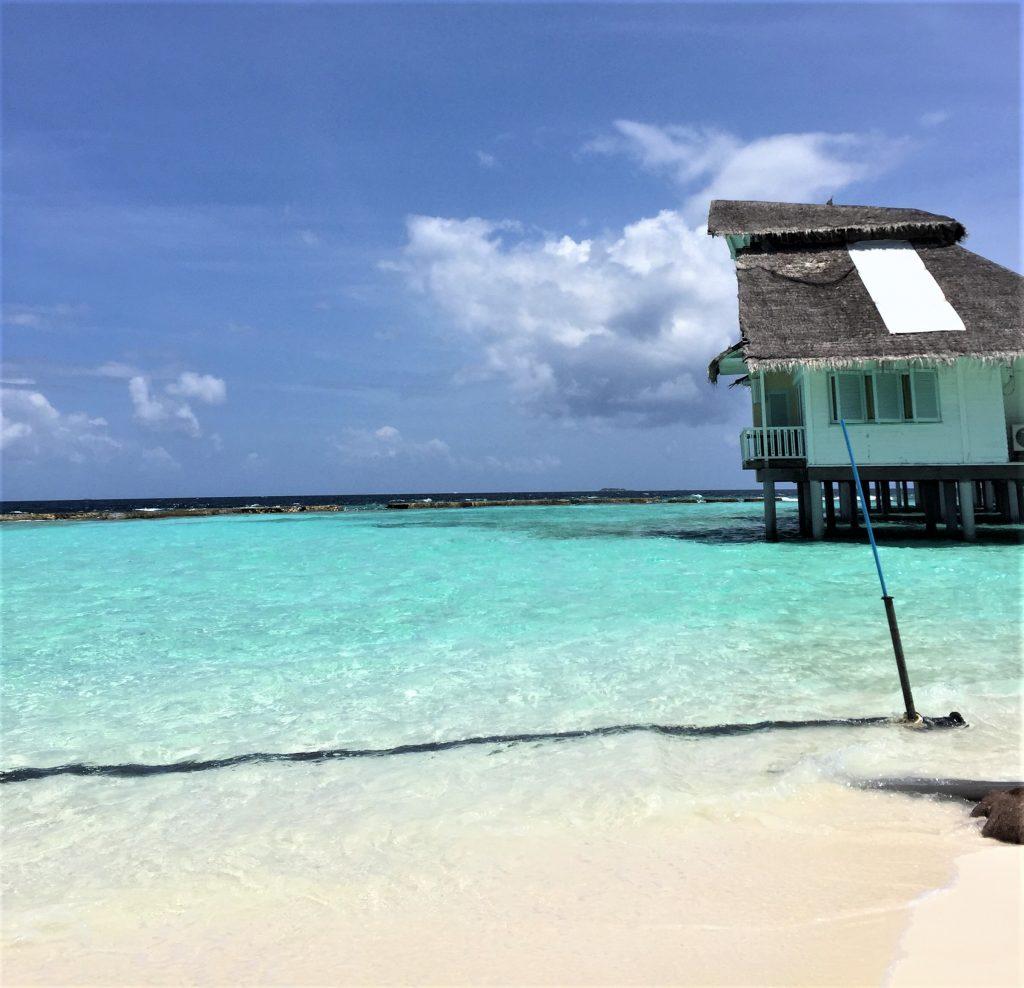 Strand ved turkis hav på Maldiverne