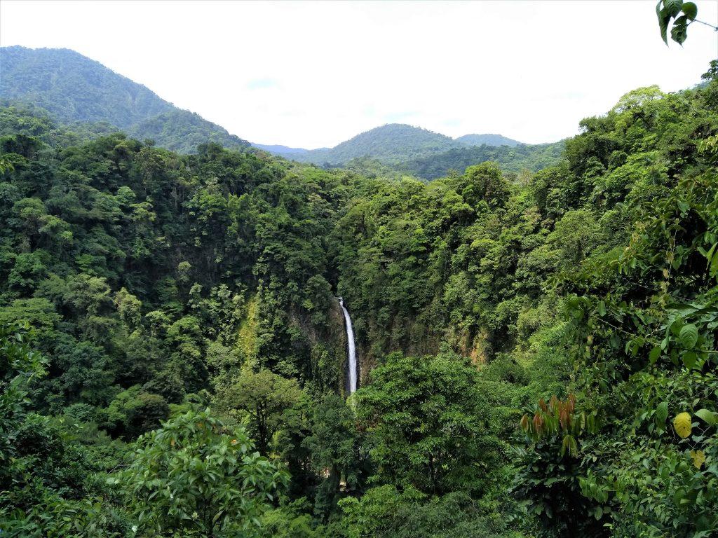 Vandfald midt i grøn jungle