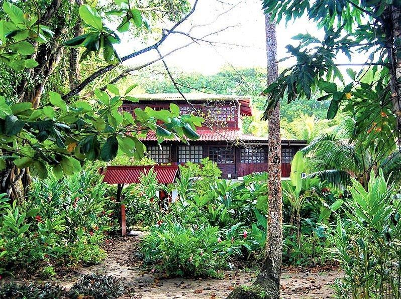 Rød hytte i skov med grønne træer og buske i forgrunden